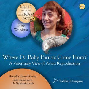 parrot reproduction webinar